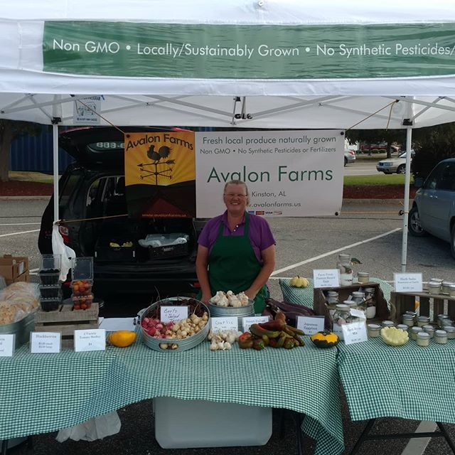 Poplar Head farmers market in Dothan is open! Come see the goodies we have today – Fresh bread, fresh eggs, beets, salad turnips, Japanese eggplants, garlic, herb salts, beautiful Italian frying peppers, blackberries, and a few other surprises! All naturally grown with no synthetic pesticides or fertilizers. Yum!