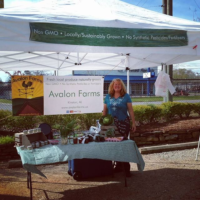 It's the first of the monthly on-site farmers markets from @marketatdothan today here at @dothan.nurseries. It's still very early in the growing season, but we've brought fresh green garlic, cabbages, pasture raised eggs, our collection of gourmet cooking salts, and our yummy jams. Stop by and say hi, and ask is about our pasture raised chickens. There's no comparison to store bought chicken!